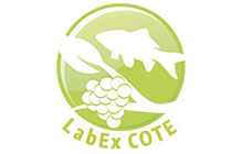 logo-labex-cote