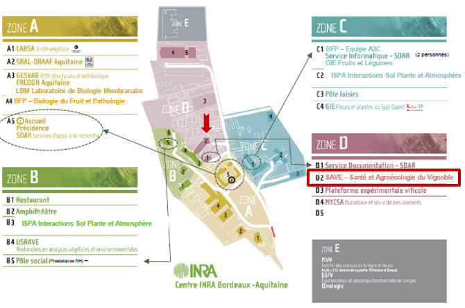 Plan du site Grande Ferrade